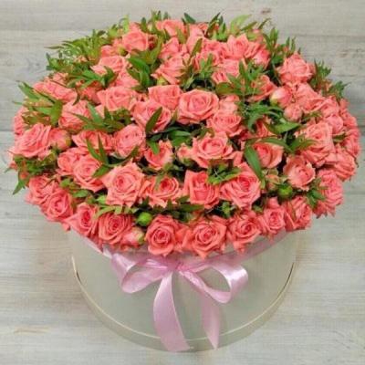 Коробка из 51 коралловой кустовой розы