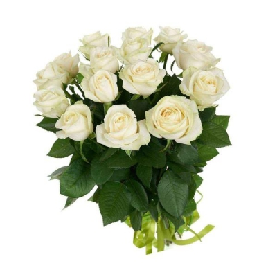 15 белых роз (50 см)