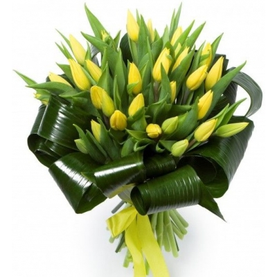 Букет из 29 тюльпанов