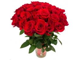 Букет из 31 красной розы (50см)