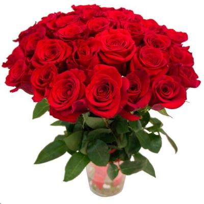 Букет из 31 розы (50см)